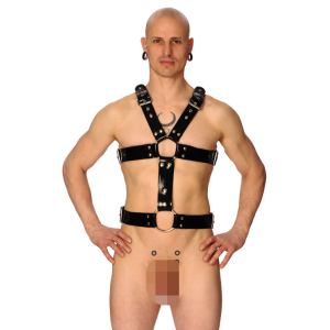 Hermes Harness