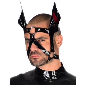 Stallion Head Harness