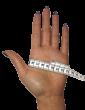 Short Gloves (wrist length)