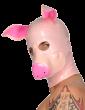 Swine Mask