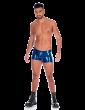 Wren Shorts