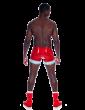 Stevo Shorts