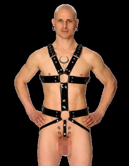 Prickus Harness